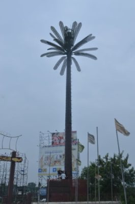 Indus Towers Camouflaged Palm Tree