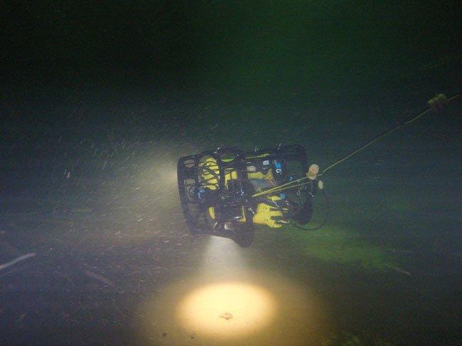 ROV Beluga lighting