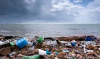 Plastic bags below 50 microns banned in Goa
